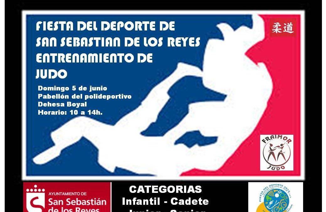 Fiesta del deporte 2016