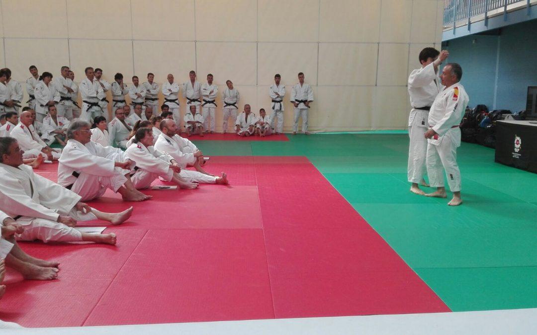 A.F.P. Actualización tècnica de Profesores y Tribunales de Examen de Judo