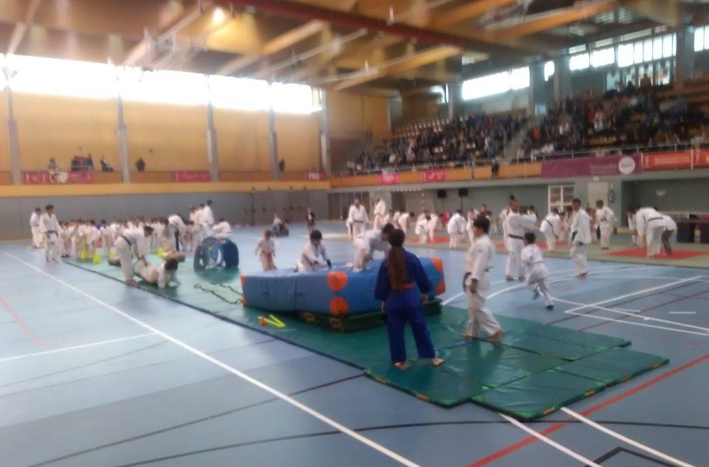 JJMM de Judo 2019