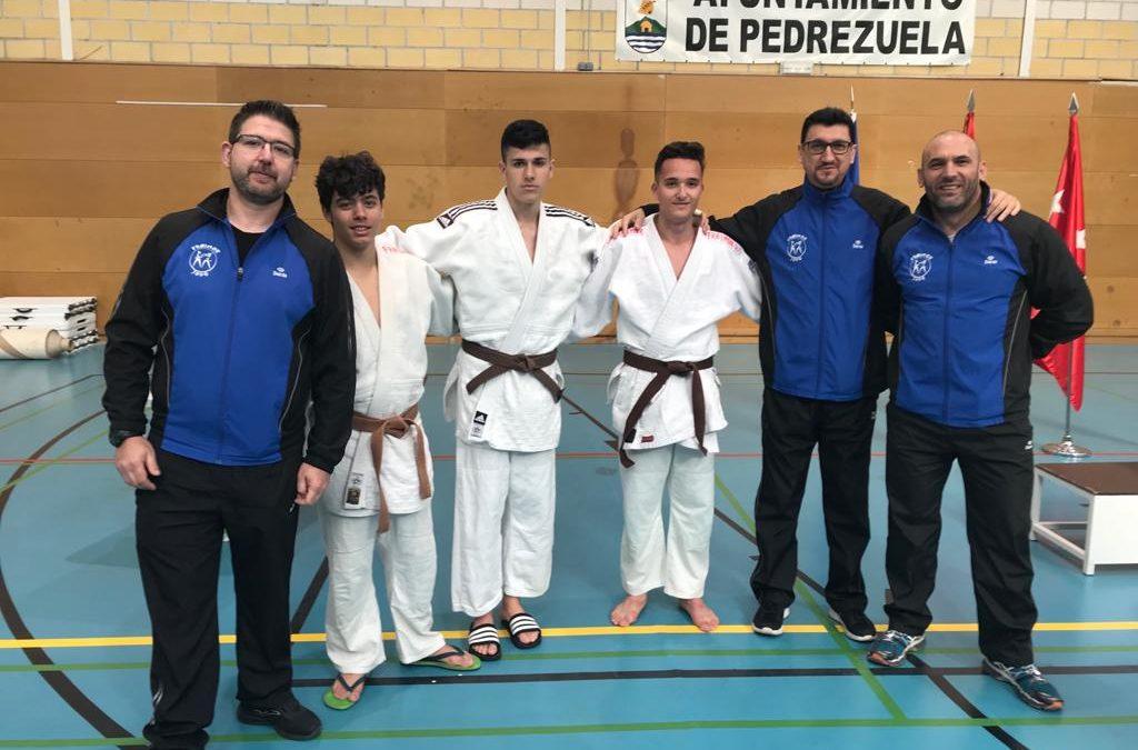 VII Open de Judo Villa de Pedrezuela